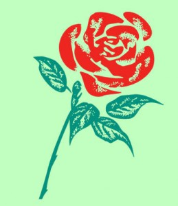 Labour Rose